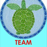 TeamTurtles