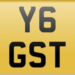 Y6GST