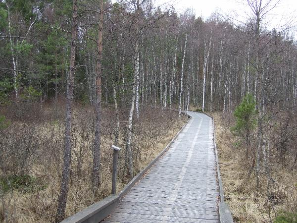 Utsikt over Kävsjön – View over Kävsjön