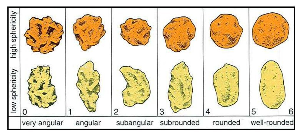 Appearance of grains