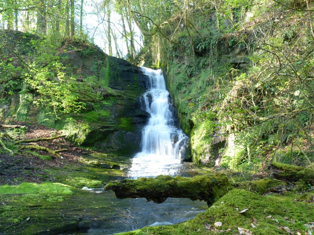 AMAZOing Falls