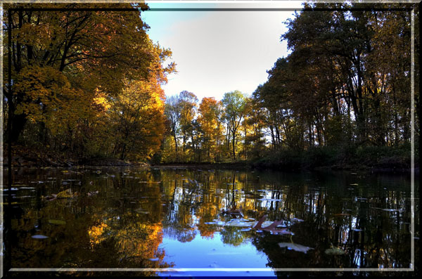 Die Weiße Elster im Herbst