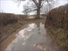 Flooded lane
