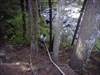 I climb down first... log image