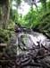 Im Wald da rauscht ein Wasserfall...