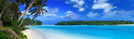dolfins beach