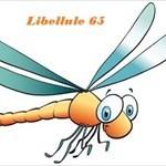 Libellule65