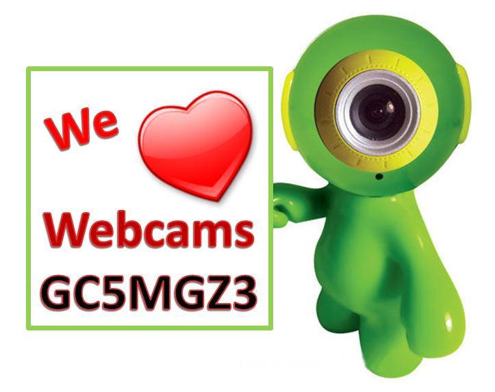 We love Webcams