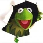 Kermitcar