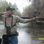 Archery Elkaholic