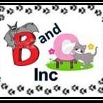 B and C Inc
