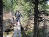 Cougarman70 crossing the log bridge