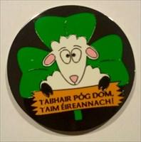 Glückliches irisches Schaf