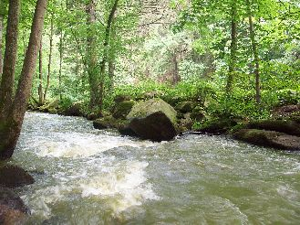 Pohled na Hamerský potok