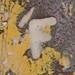 c3a8a3bd-571e-42da-a707-ed7da0a56a86.jpg