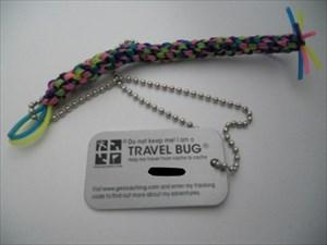Timinesen-Bug