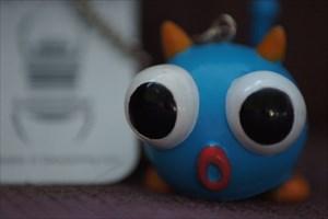 Blue Big eye