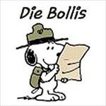 Die_Bollis