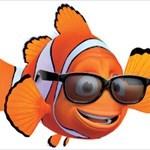 Nemo5050