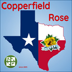 Copperfield Rose