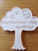 Quercus Robur - West Top Cache Coin