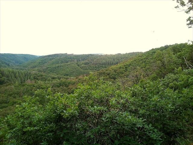 Aussicht übers Tal
