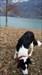 TB8D4Y5 Image téléchargée depuis l'appli Geocaching®
