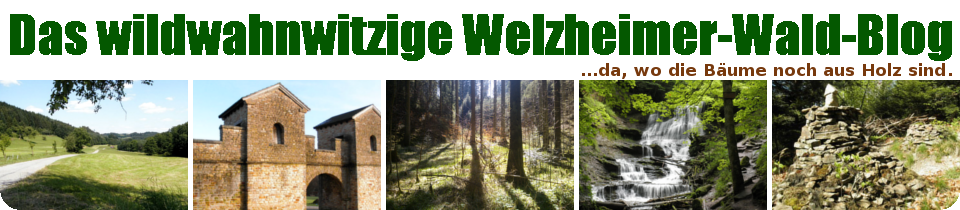 Das wildwahnwitzige Welzheimer-Wald-Blog