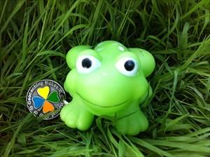 Der grüne Frosch