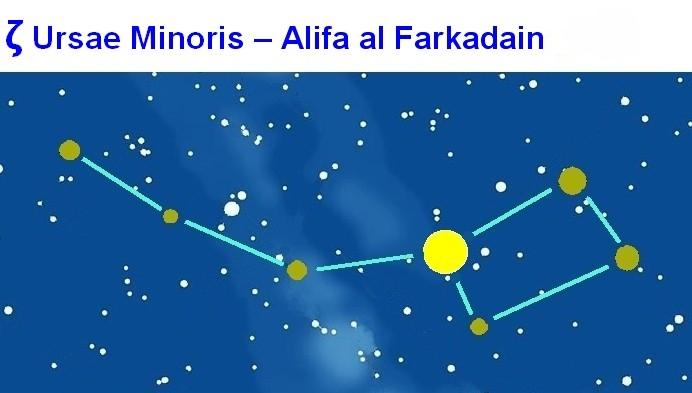 UMi Alifa al Farkadain