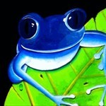 scoutfrog