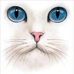 CatFur