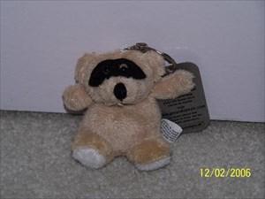 Bandit Bear