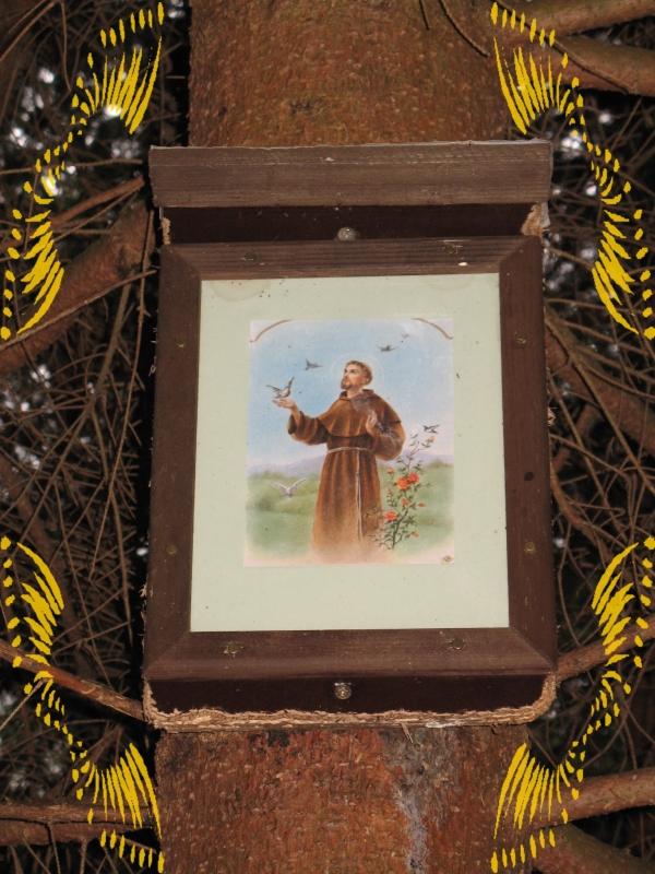 sv. Frantisek Assisi
