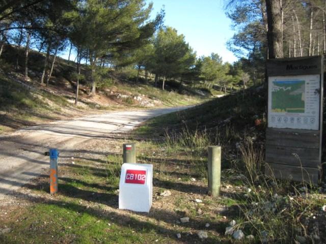 Chemin de randonnée / Walking track