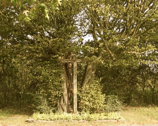 Hessenbaum