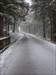 Wintercachen