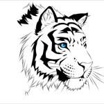 TigeressG