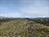 Looking north along the ridge