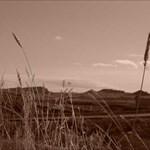 westernskies