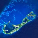 Bermudian