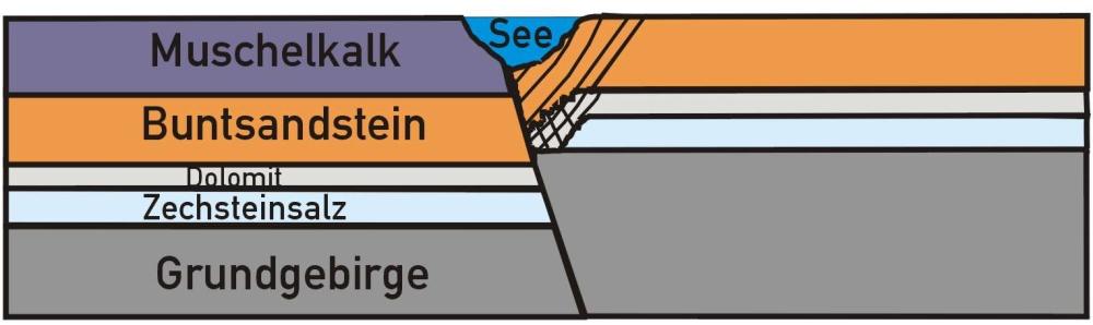 Schnittbild 3: Der durch die Auslaugung entstandene Hohlraum bricht ein und die darüber liegenden Sedimentlagen stürtzen nach. Die an der Oberfläche entstehende trichterförmige Mulde (Doline) füllt sich mit Wasser und es entsteht ein See.