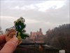 Drachen in Werheim