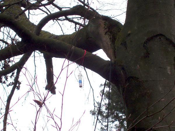 Klettergurt Baum : Klettergurt möbel gebraucht kaufen ebay kleinanzeigen