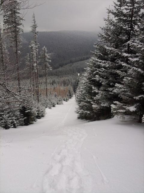 Cesta na Osikovy vrch