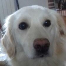 avatar de AndPoison123