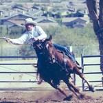 cowboy1629