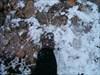 a primeira caminhada da neve da época log image