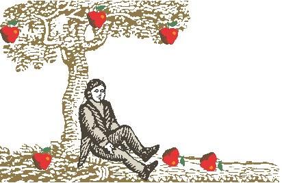 Newton Apfel