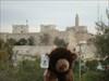 Buffy in Israel #3